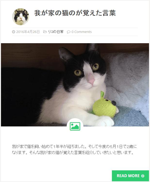 pet-issho-rico